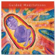 Guided Meditations for Conception and Pregnancy : Journey to the Womb - Chitra Sukhu